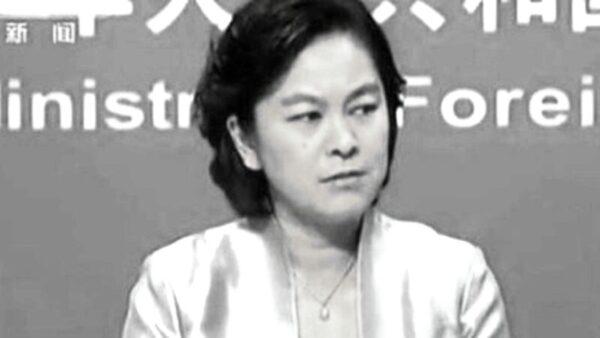 華春瑩回應蓬佩奧避重就輕 歐洲作家發推嘲諷