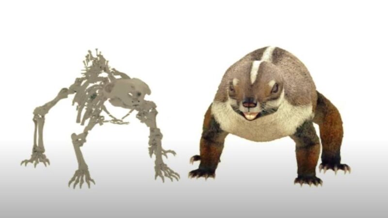 科学家确定新物种!打破进化规则