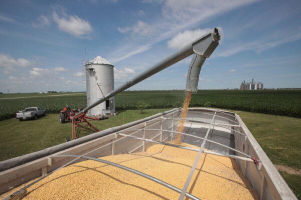 美媒:中国1季度实际对美农产品采购额是13年来最低