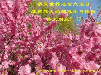 大陸鄉村法輪功學員恭賀世界法輪大法日暨李洪志大師華誕(19條)