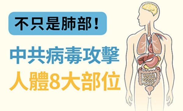 不只是肺部!中共病毒攻击人体8大部位