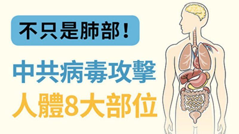 不只是肺部!中共病毒攻擊人體8大部位
