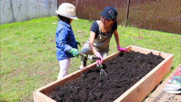 【美食天堂】DIY高架菜園~簡單易學!一起動手做!家常料理食譜 一學就會