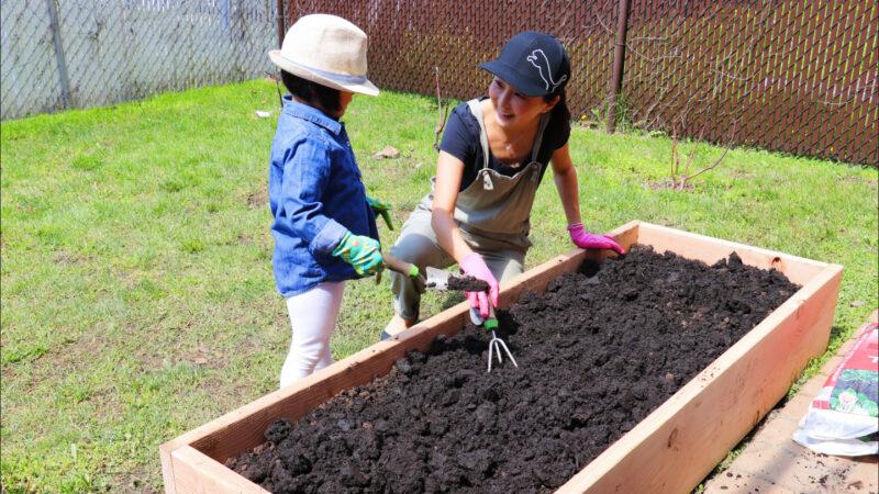 【美食天堂】DIY高架菜园~简单易学!一起动手做!家常料理食谱 一学就会