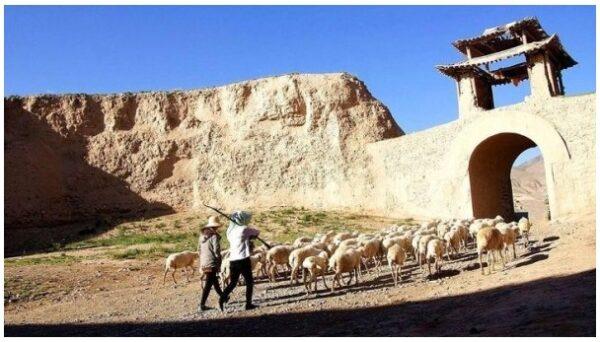 荒漠中的古城为何能挺立400多年?(图)