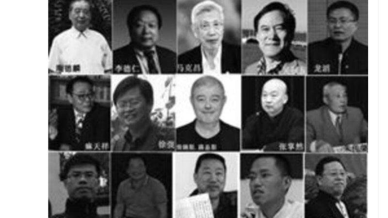 """武汉大学""""文人打手""""对法轮功学员的迫害"""