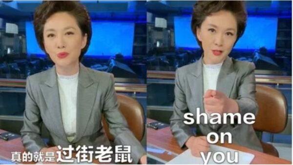 網絡熱帖:海外華人都要跟CCTV惡補中文