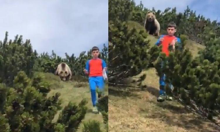 捏一把冷汗!12岁男童突遇大野熊 临危不乱逃过一劫