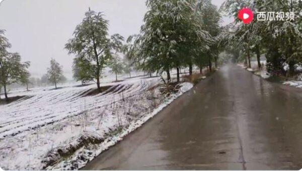 天现异象 青海多地夏日降大雪(视频)