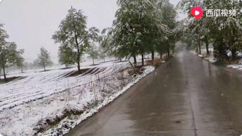 天現異象 青海多地夏日降大雪(視頻)