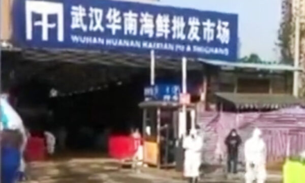 中共销毁武汉市场动物样本 疑拖延病毒溯源调查
