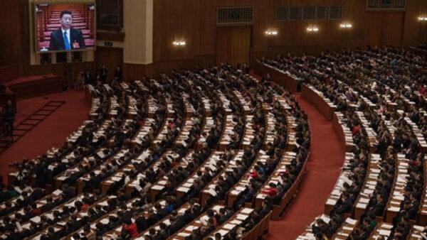 大陸政法教授兩會前發聲:人大不是中國人的代表