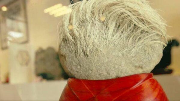 驚奇!石頭「成精」了?竟然長出了白髮