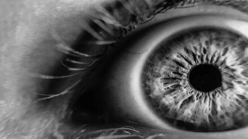 失明20年后奇迹复明 竟然是因为一场……
