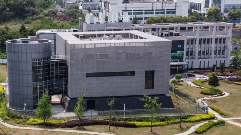 張明健:武漢p4實驗室圖紙被改 內幕可怕