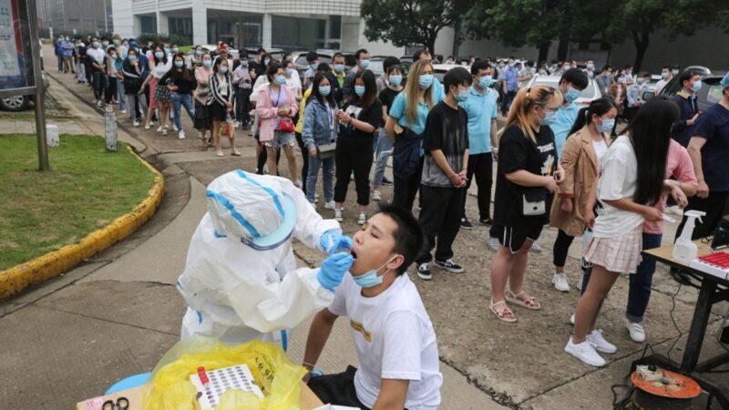 武汉全民检测紧急叫停 传阳性率高达10%