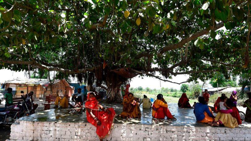 热浪袭击 印度西部飙摄氏50度 新德里破10年记录