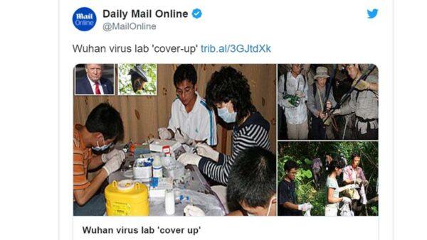 武汉病毒所偷偷删照:员工不戴口罩剖蝙蝠