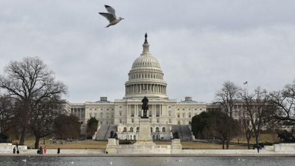 共和党连赢2场国会补选 川普助推夺回众院
