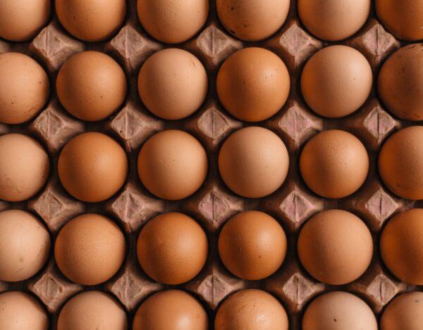 印度母鸡下怪蛋 蛋黄是绿色的