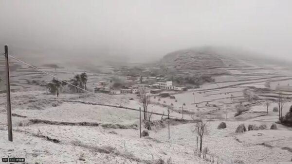 黑龙江5月飞雪气温骤降30度 农民绝望