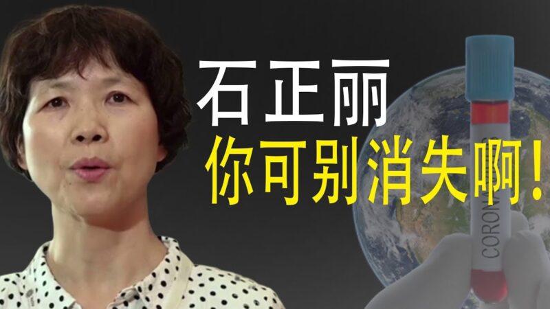 【老北京茶馆】紧急保护石正丽 追责四起 党情急甩锅法国?