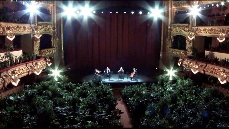 """史上首见 2292个""""盆栽观众""""塞爆西班牙剧院"""