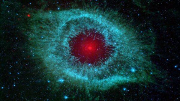 显微镜下放大十亿倍后 细胞看起来是什么样子?