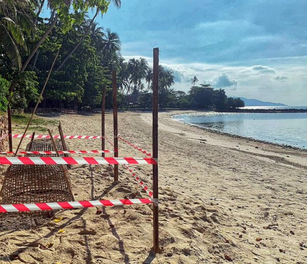 疫情封闭海滩 泰国苏梅岛数十年来首度海龟下蛋