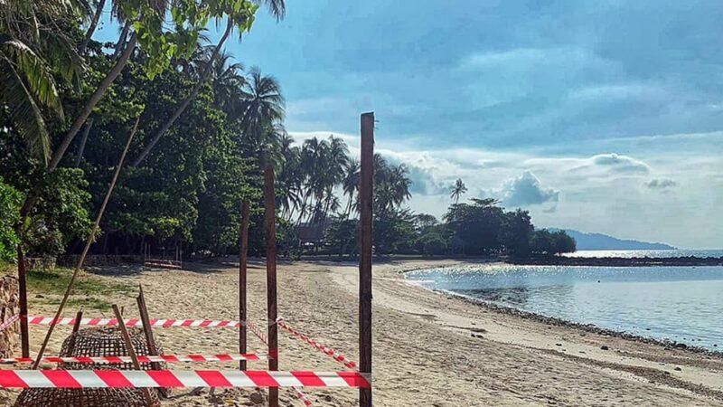 疫情封閉海灘 泰國蘇梅島數十年來首度海龜下蛋