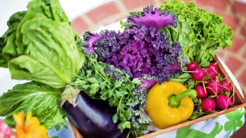 养生食疗:常吃6种食物有助预防心脏病(组图)