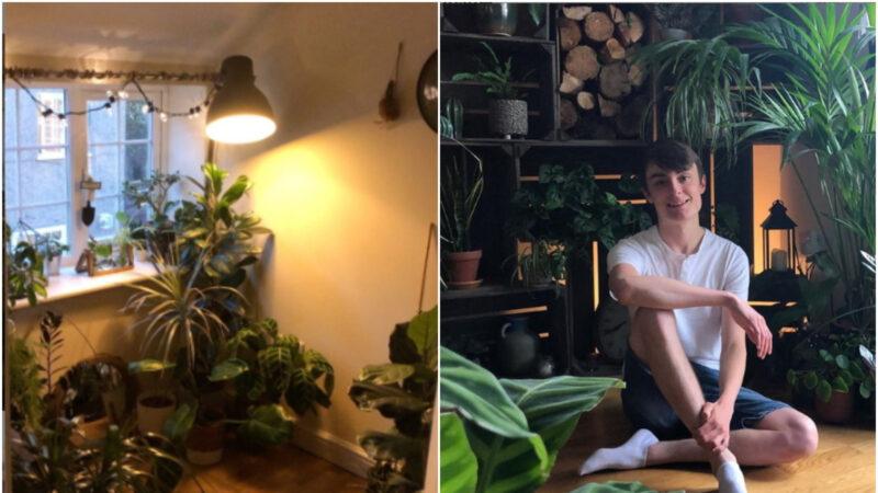 森林男孩打造室内丛林 家中种植1400棵植物