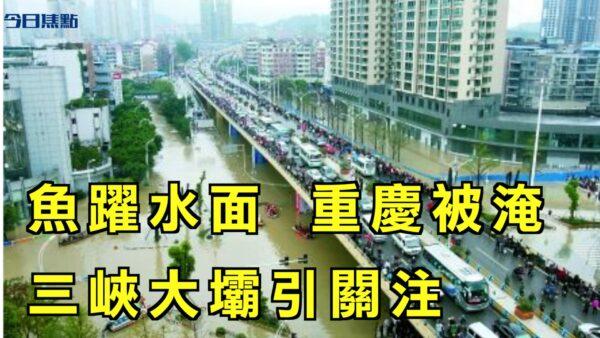 【今日焦点】多地现鱼跃水面异象 重庆被淹 三峡大坝引关注