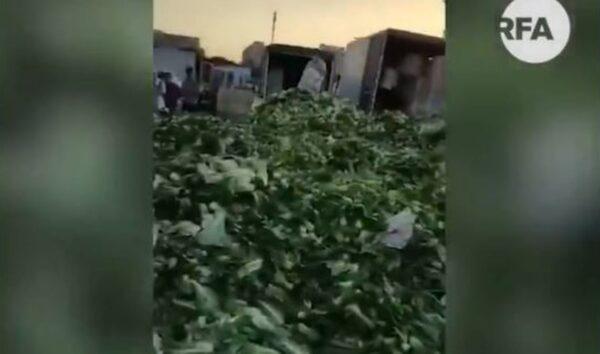 北京新发地市场货品全部销毁 商户血本无归(视频)