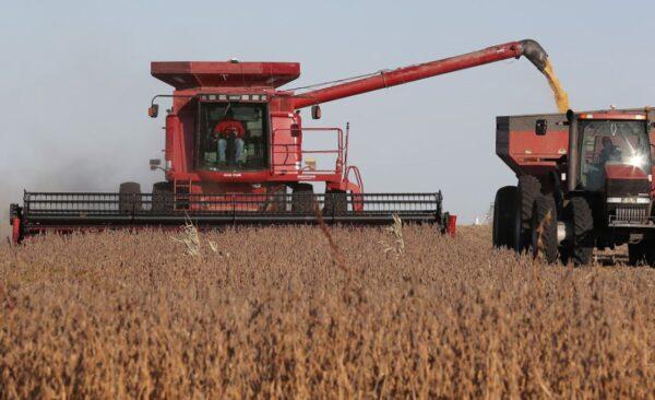 蓬楊會談後 傳中共加快採購美國農產品