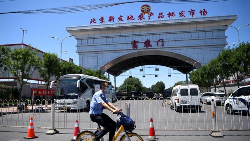 北京甩鍋三文魚 魚貨老闆損失慘重痛哭(視頻)