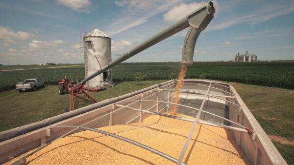 中共悄然进口美国农产品 批准美银行进驻