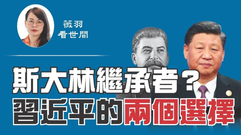 【薇羽看世间】斯大林的继任者?习近平的两个选择