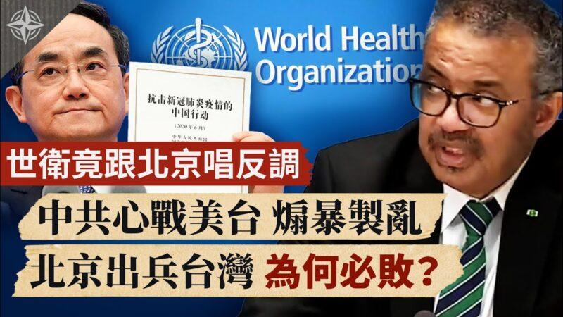 【十字路口】世卫竟跟北京唱反调 北京出兵台湾 为何必败?
