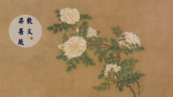 【闈闈道來】染薔薇