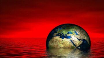 科学家警告:第六次生物大灭绝可能在加速中