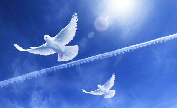 善念是最強大的能量