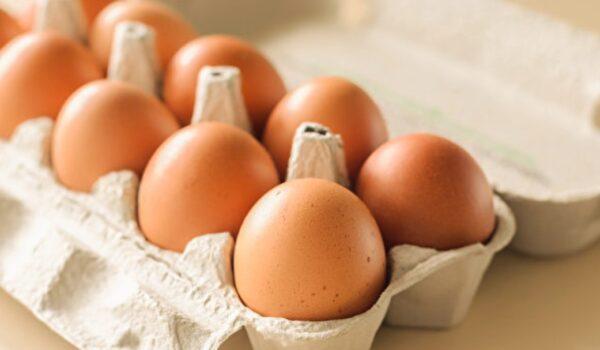 雞蛋不是越大越好!挑選好蛋有7個秘訣