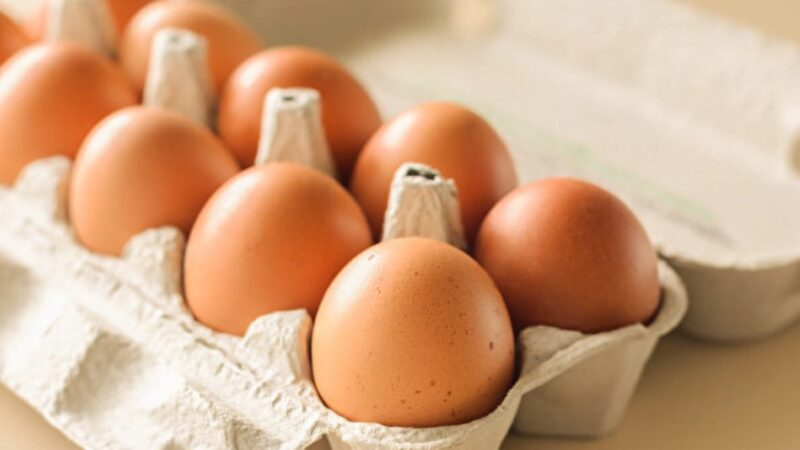 鸡蛋不是越大越好!挑选好蛋有7个秘诀