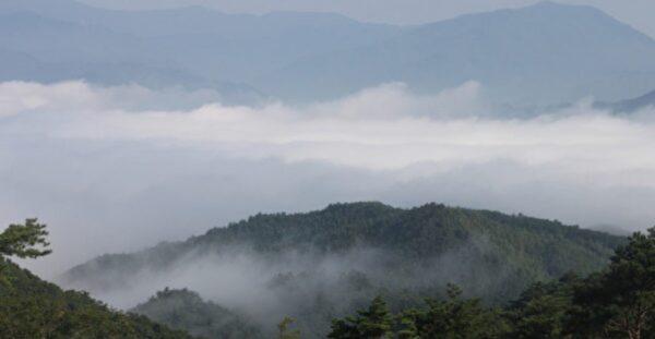 蘇東坡前世為和尚 黃庭堅由信佛女子轉生
