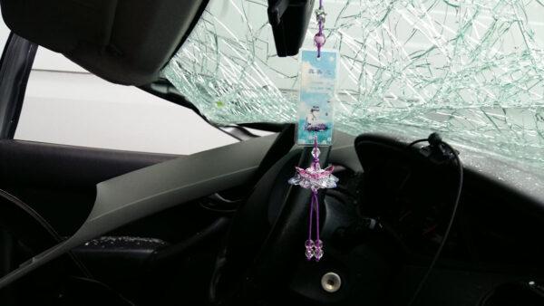 一场致命车祸 小莲花让他化险为夷