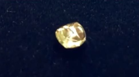 花3美元租荒地 印度幸運男挖到10克拉鑽石
