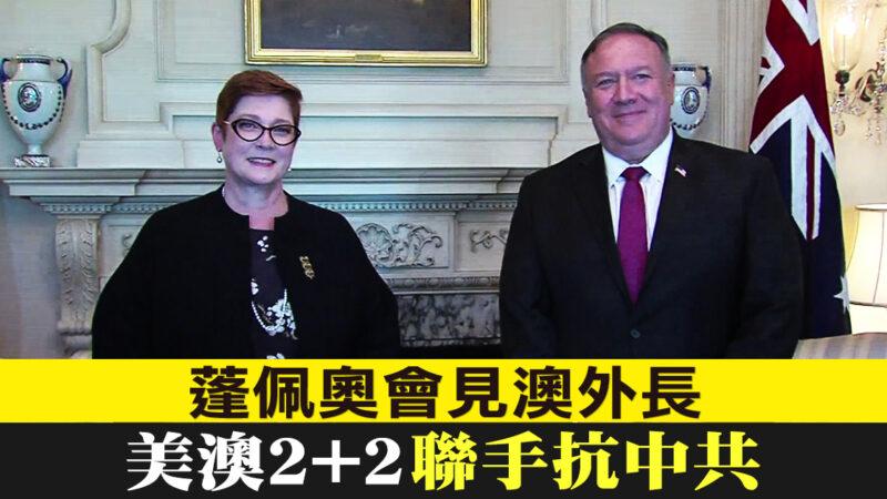 美澳外长防长会谈挺台:台湾扮演重要角色
