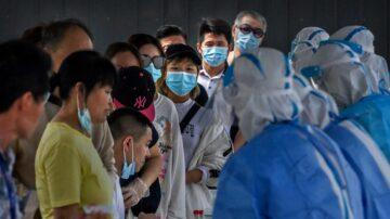 【疫情更新22】疫情下粮食危机严峻!1.22亿人恐饿死