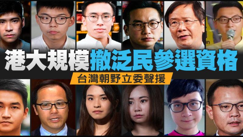 港大规模撤泛民参选资格 台湾朝野立委声援
